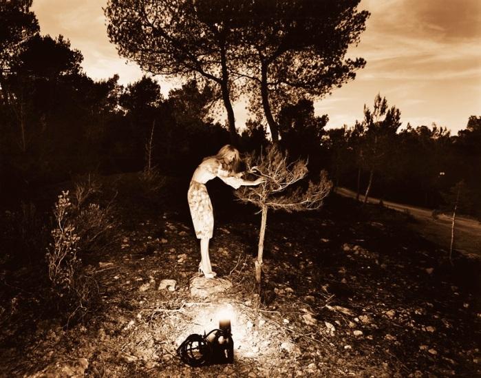 jean-francois-lepage-photographyjpg